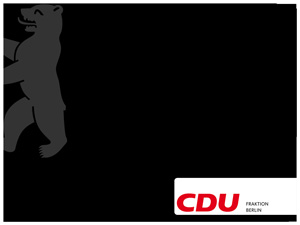 Florian Graf , Vorsitzender der CDU-Fraktion